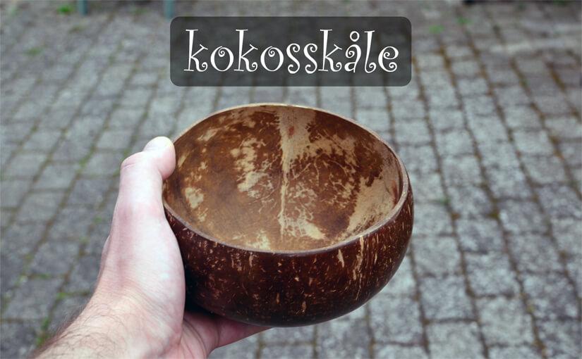 🥥 Kokos-skåle (coconut bowls) – Bæredygtige skåle af kokosnød