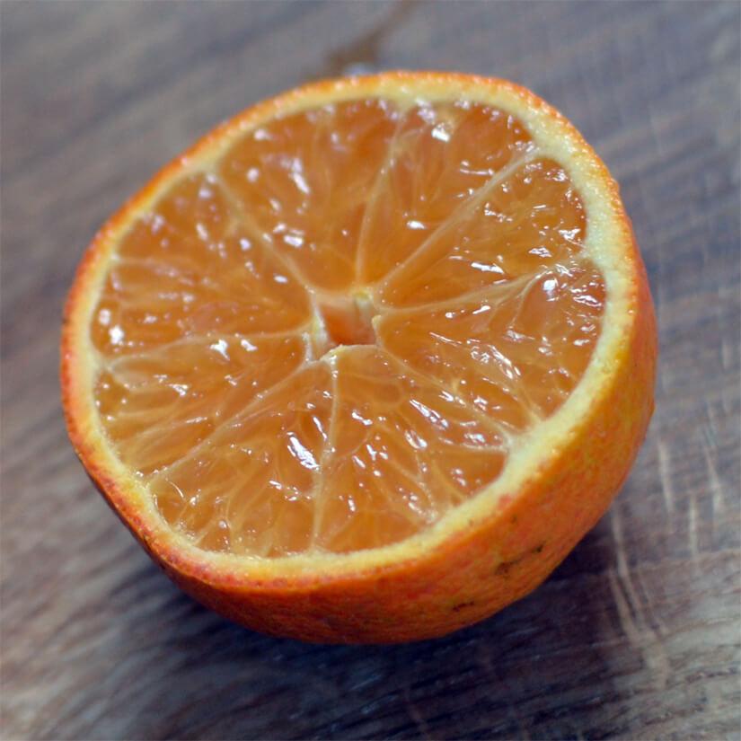 Mandarin / klementin / citrus / citrusfrugt - frugtfaste / frugt-faste